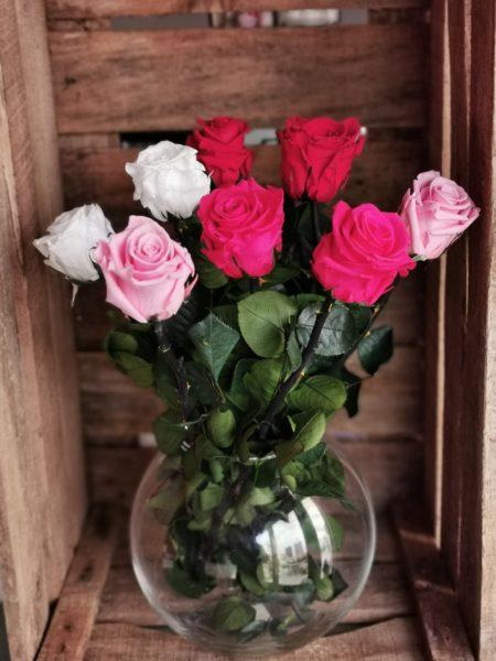 Rose eternelle (lot de 3)